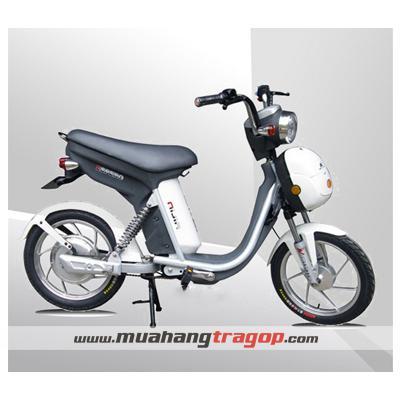 Xe đạp điện NIJIA Liên Doanh