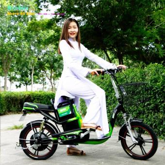 Xe đạp điện STARBIKE nhúng khung sơn 18 inch ( Bánh mâm )