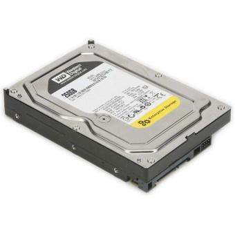 Ổ cứng gắn trong WD HDD 250G 7200rpm S-ATA3 (Bạc)