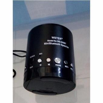 Loa bluetooth đa năng Wster WS-633BT ( đen)