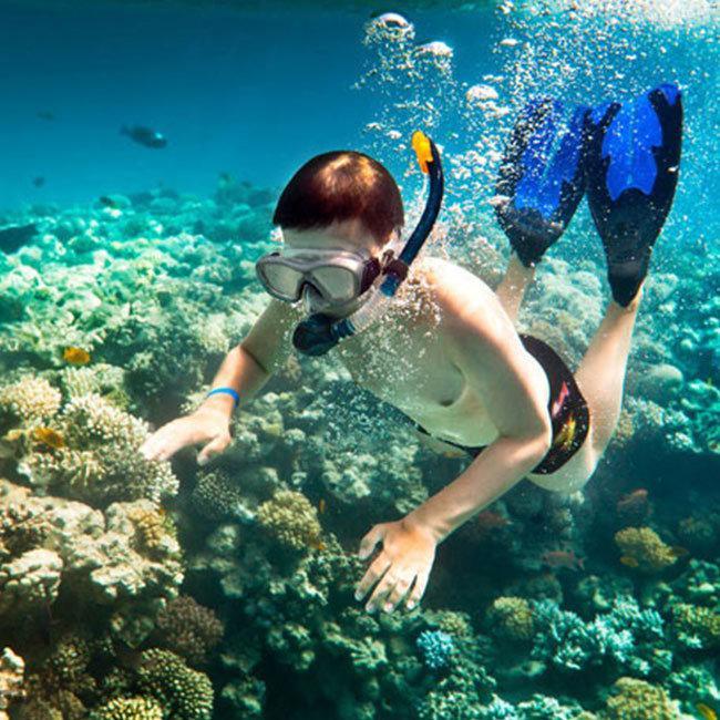 Tour Đảo Bình Ba 2N2Đ Gồm Đêm Tiệc Hải Sản – Lặn Ngắm San Hô - Mini Bar Trên Biển - Khởi Hành Tết Âm...