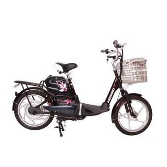 Xe đạp điện Nishiki H4 (Đen)