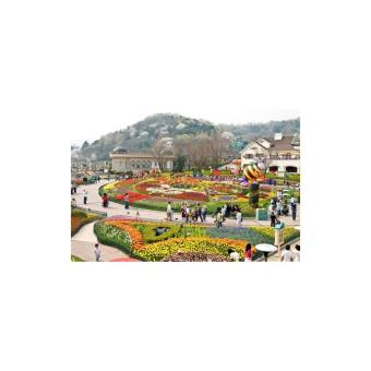 Seoul - Everland - Nami (Giá sốc)