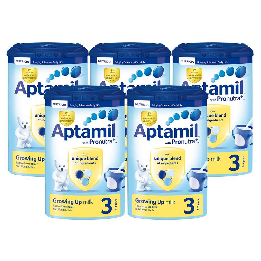 Combo 5 hộp sữa Aptamil Anh số 3 900g (12 - 24 tháng)