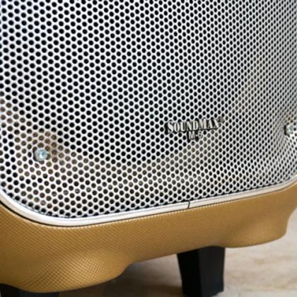 Loa Kéo Bluetooth SoundMax M6 - Nâu