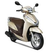 Xe tay ga Honda Lead 125cc (Vàng nâu)