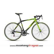 Xe đạp đua TRINX TEMPO 1.0 2016