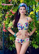 Bikini BA109