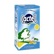 Sữa tươi Lactel tách kem 1l