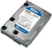 WD HDD Caviar Blue 500GB 3.5