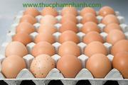 Trứng gà cây CP -  Loại 17 kg