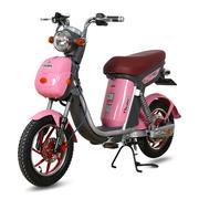 Xe đạp điện Nijia Deluxe