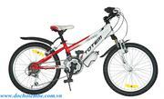Xe đạp trẻ em TOTEM Nhôm 20-226
