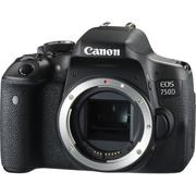 Canon EOS 750D 24.2MP và lens Kit 18-55mm IS STM (Đen)