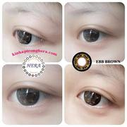 Kính áp tròng màu EBB(Gold)