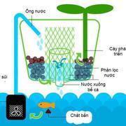 Bể cá thông minh Arky Herb & Fish kiêm chậu cây và đèn đọc sách 3 in 1 (Trắng trong suốt)
