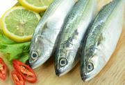 Cá nục gai Seafood - Loại 1kg