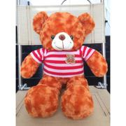 Gấu Bông Teddy Cao Cấp Size 50Cm Hàng Vnxk