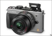 Panasonic Lumix GX1 (14-42mm/F3.5-5.6 Lens )
