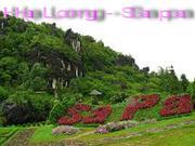 Vé xe khách chất lượng cao chuyên tuyến Hạ Long - Sapa