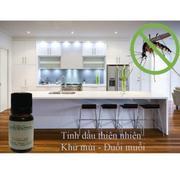 Bộ 2 chai tinh dầu sả chanh đuổi muỗi (10ml) và đèn xông tinh dầu điện TTVG xanh lá + Tặng 1 chai ti...