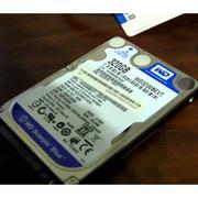 Ổ cứng gắn trong Western Caviar Blue 320GB - Hàng nhập khẩu