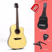 Đàn Guitar Acoustic DIONO 729