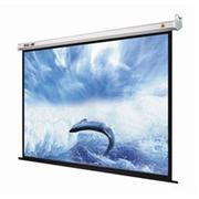 Màn chiếu Dalite 60x60 inch treo tường