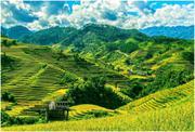 Hà Nội - Lào Cai - Sapa - Chinh phục nóc nhà Đông Dương Fansipan - Yên Tử - Hạ Long - Bái Đính - Trà...