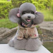 Coral Fleece Dog Hoodie Warm Coat Pet Cat Dog Jacket Apparel Puppy Clothes (Intl)