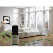Bộ 2 chai tinh dầu bạc hà thơm phòng (10ml) và đèn xông tinh dầu điện size L AH07+ Tặng 1 chai tinh ...