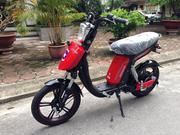 Xe đạp điện CAP A Plus nhập khẩu