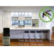 Bộ tinh dầu hoa hồng thơm phòng (10ml) và đèn xông tinh dầu điện size L AH01 + Tặng 1 chai tinh dầu ...