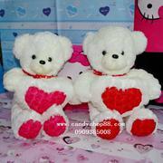 Gấu bông ôm tim hoa hồng TNB-22