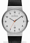 Đồng hồ nam Skagen SKW6024