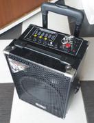 Máy trợ giảng kéo tay Professional Audio RHL-Q8USB/ SD