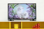 Tivi LED Samsung UA32J4003DK 32 inch HD 100Hz