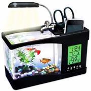 Bể cá Mini kiêm đồng hồ để bàn trang trí đẹp (đen)