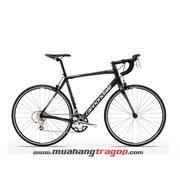 Xe đạp cuộc Canondale Synapse Alloy 8 Claris BBQ 2015