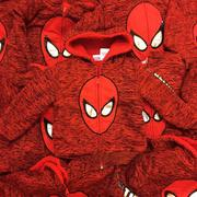 Little Maven-Áo nỉ Spiderman 6T