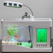 Bể cá Mini kiêm đồng hồ có đèn LED để bàn (trắng)