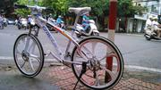 Xe đạp thể thao BMW Crosstar niềng đúc 24 tốc Shimano (Mã SP:  BMW CRo )
