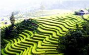 Hà Nội - Đông Bắc: Hà Giang - Lũng Cú - Đồng Văn - Mã Pí Lèng - Mèo Vạc - Cao Bằng - Thác Bản Giốc -...