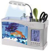 Bể cá cảnh mini phong thủy để bàn - bẻ cá