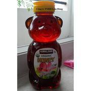 Mật Ong Kirkland Organic Honey Bears USA - Chai 680g