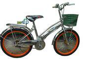 Xe đạp trẻ em 20INOX-L1 (Mã SP:  20INOX-L1 )