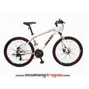 Xe đạp địa hình GIANT ATX 618 2018