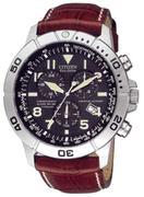 Đồng hồ nam Citizen BL5250-02L