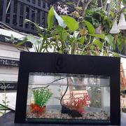 Bể cá kết hợp trồng cây Gagaco BCCB101 (Đen)