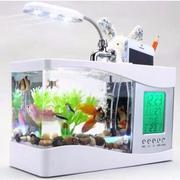 Bể cá thuỷ sinh để bàn mini (Trắng)